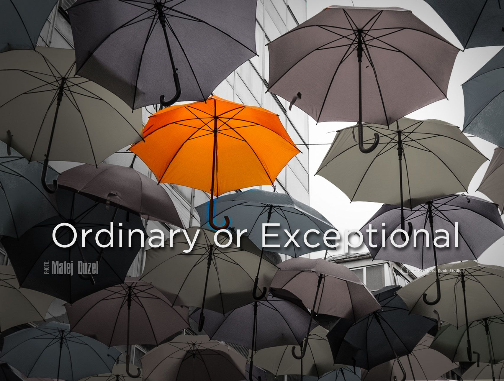 you are ordinary