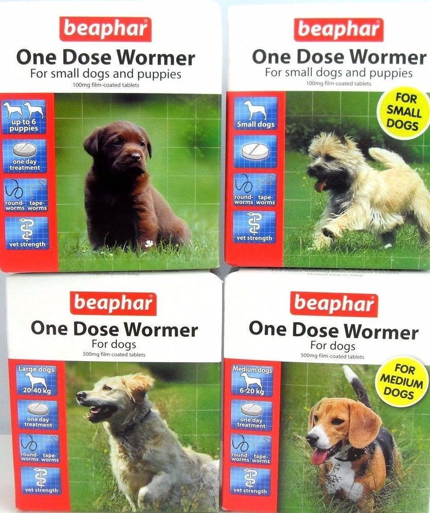Details about beaphar one dose wormer small medium and