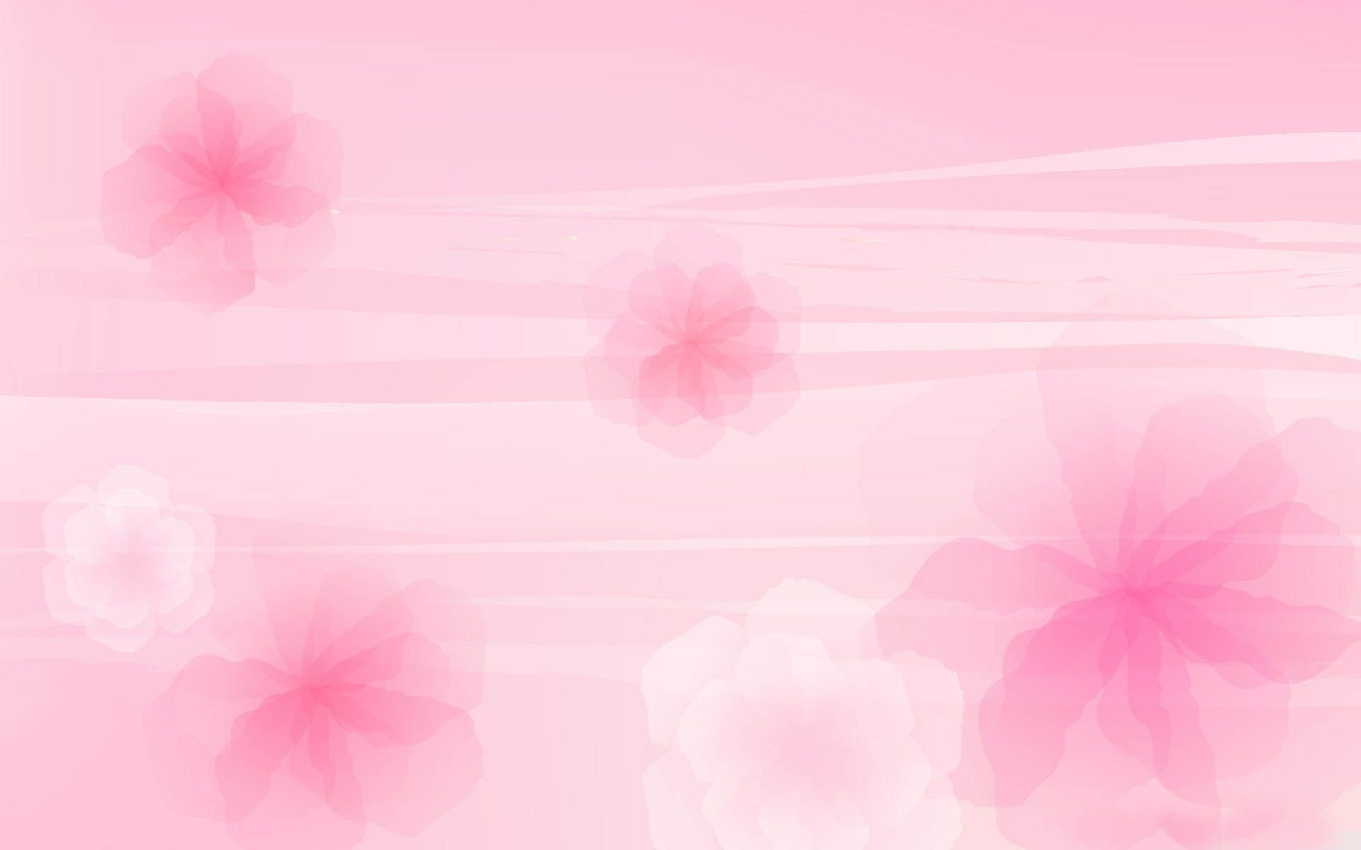 pink backgrounds wallpapers wallpaper wallpapers pinterest