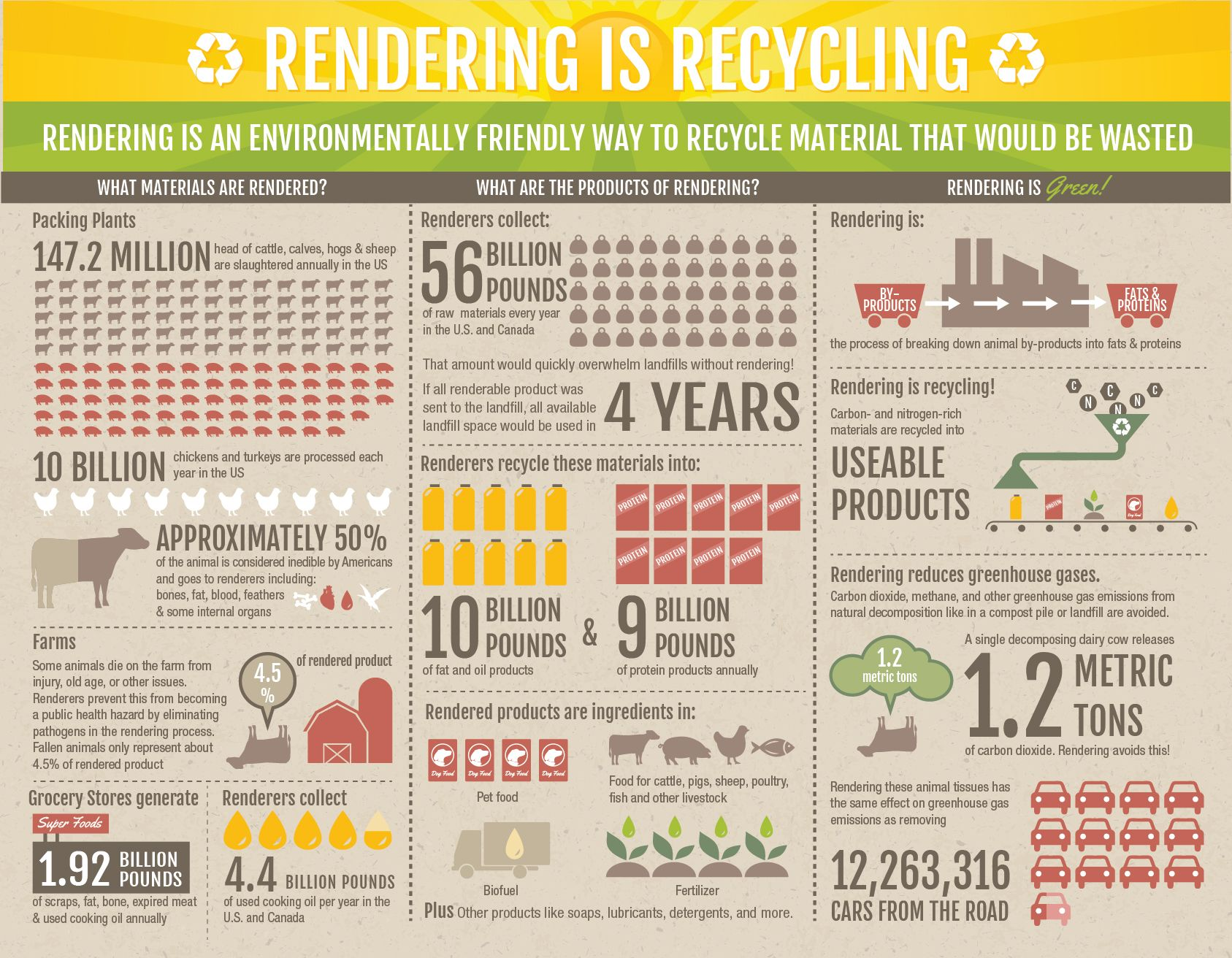 Front of our brochure.  Please email us for print copies!  #rendering #ag #farm #petfood #recycling