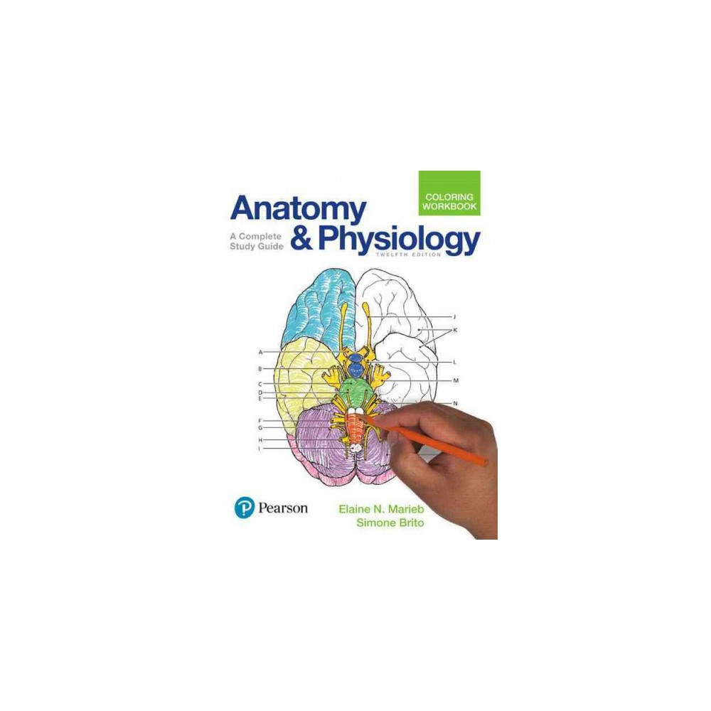 Anatomy And Physiology Coloring Workbook A Complete Study Guide Paperback Elaine Nicpon
