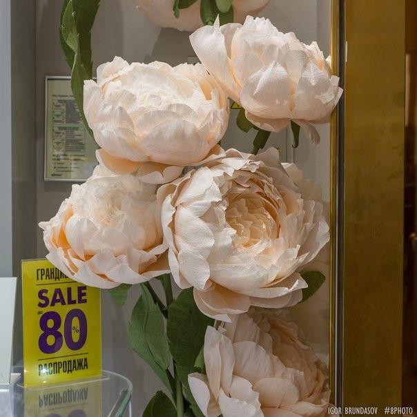 Бумажные цветы большие мастер класс