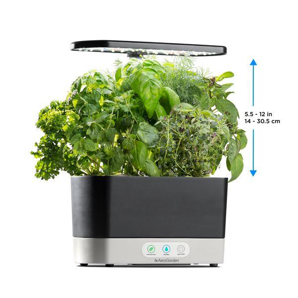 Indoor Gardening 101 Finding The Light Gourmet Herbs 400 x 300