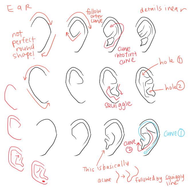 kelpls UMM PEOPLE ASKED ABOUT NOSES AND EARS SO YEAH