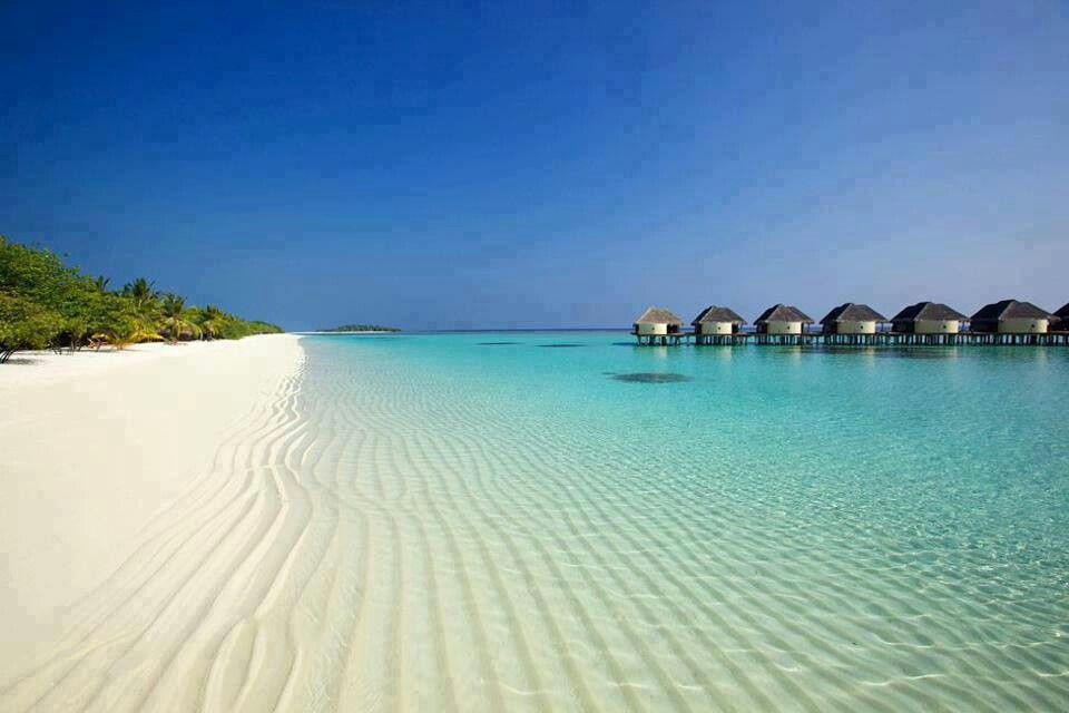 Maldives.... Love!