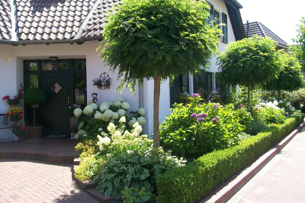 Vorgarten kugelbaum kert pinterest garten gardens for Vorgarten inspirationen