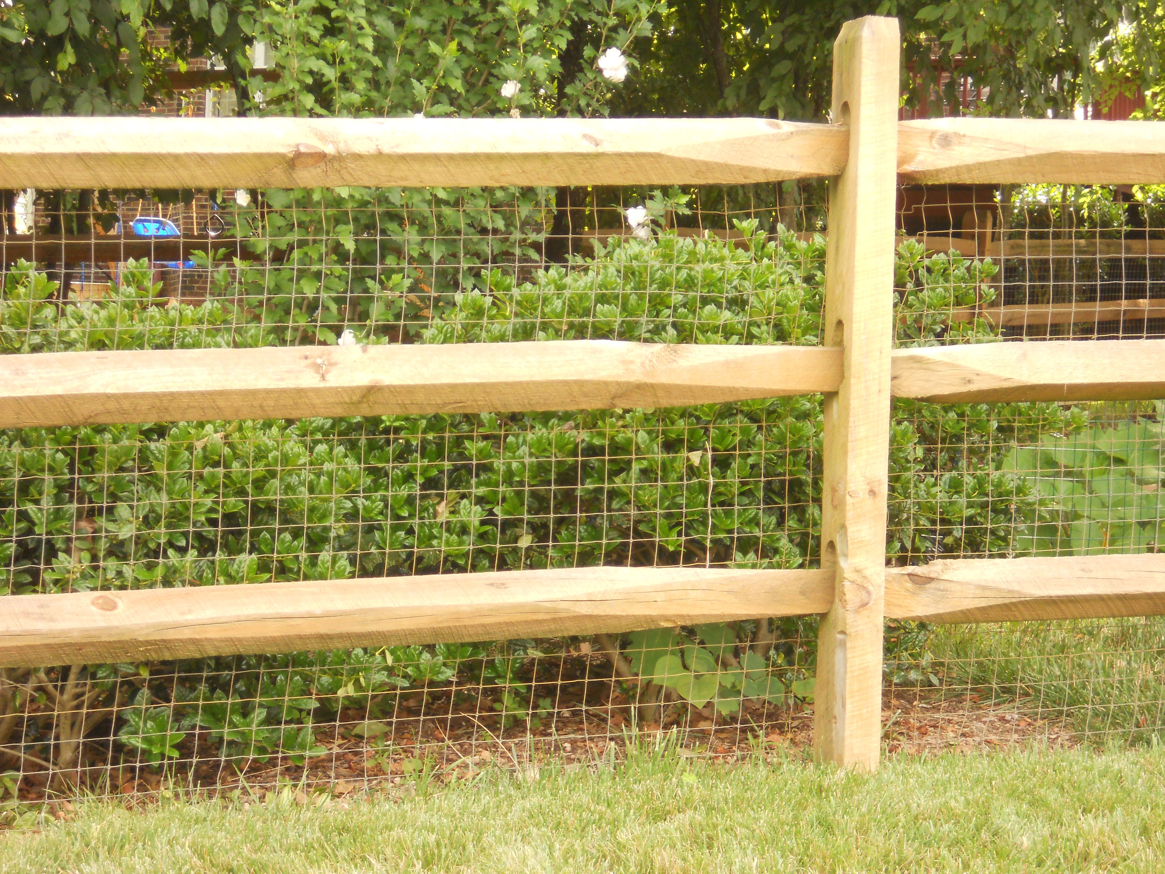 Split Rail Fence W Wire Behind Split Rail Fence Backyard Fences Modern Fence