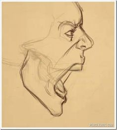 Side View Of Face Drawing Open Mouth Google Search Face Drawing Drawing Expressions Art Sketches