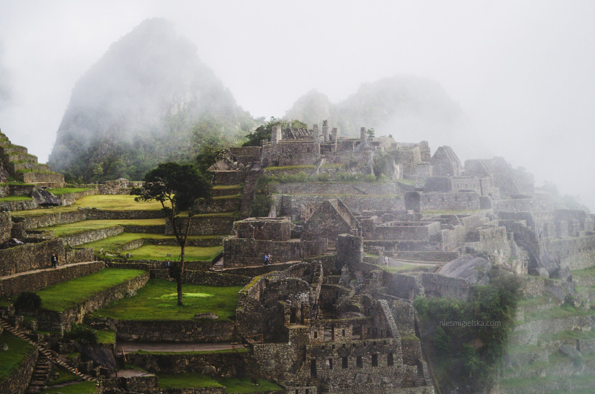Machu Picchu by Niesmigielska.com