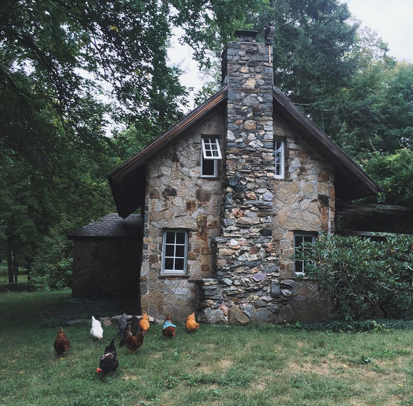 a little cottage in a small town in Connecticut - Slender Nettles