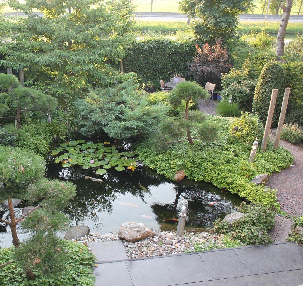 kleine japanse tuin japanse tuin pinterest japanse