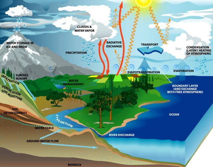 The water cycle the water cycle pinterest the water cycle ccuart Gallery