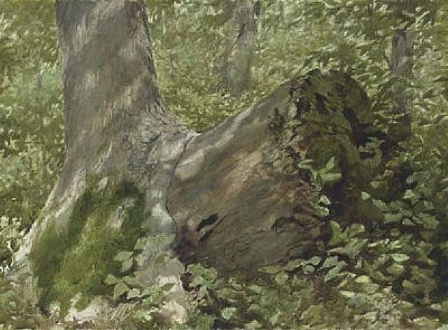 Engulfed by Jamie Wyeth