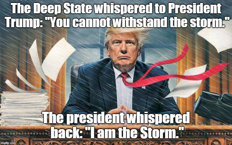 Bildresultat för storm meme