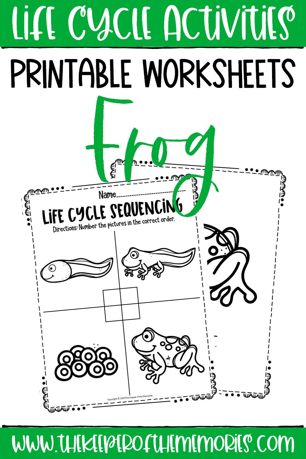 Free Printable Frog Life Cycle Worksheets Frog Life Kids Learning Activities Lifecycle Of A Frog