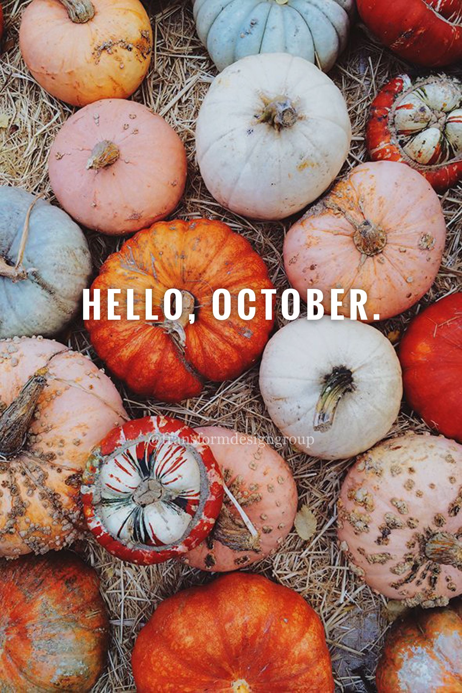 Hello, October! #October #HelloOctober #HiOctober #WelcomeOctober #Pumpkins #TransformDesignGroup #Fall #GraphicDesign