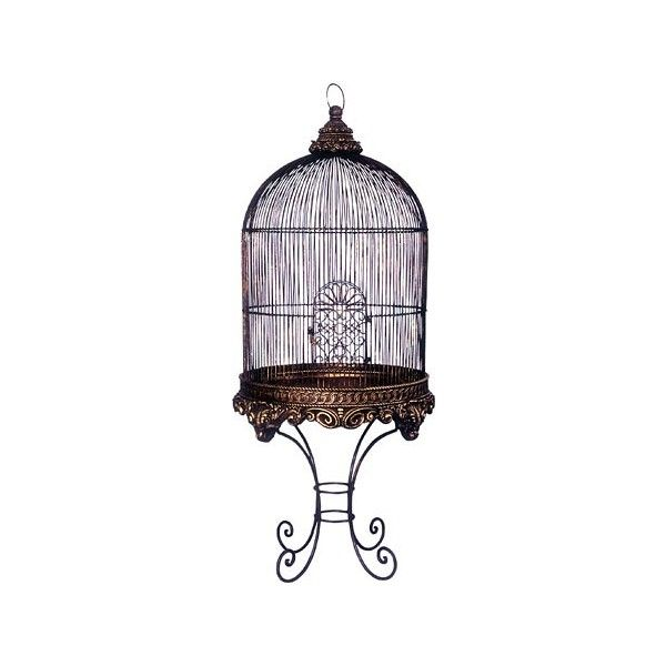 Bronze Imperial Birdcage Parrot Bird Cage 400 Liked On Polyvore Featuring Home