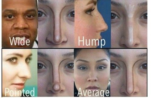 How To Contour Different Nose Shapes Nose Shapes Nose