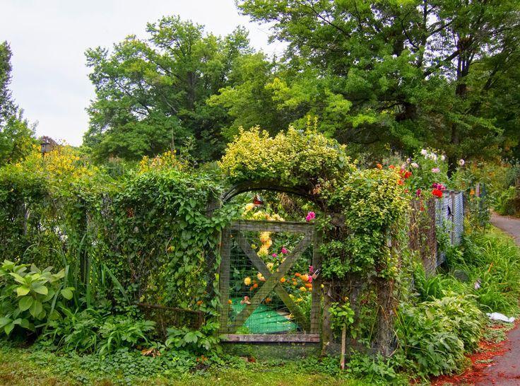 Image result for community gardens boston ma Community