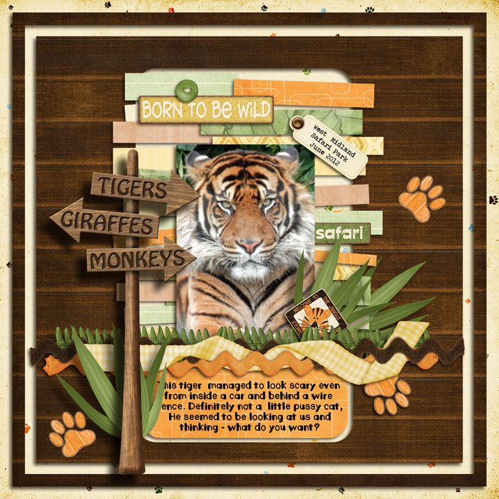Cute Zoo Layout By Seatrout On Scrapbook Scrapbooking