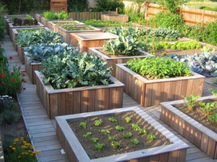 Construire un potager sur lev pour jardiner debout construire un potager sur lev pinterest for Bac a potager en bois