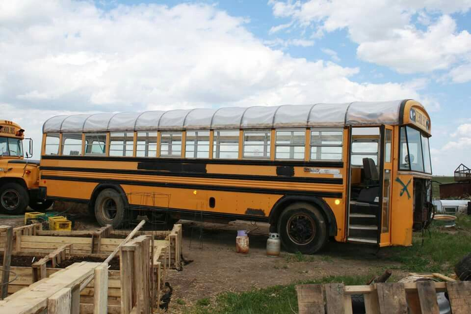 School Bus Greenhouse With Images Greenhouse Plans School Bus