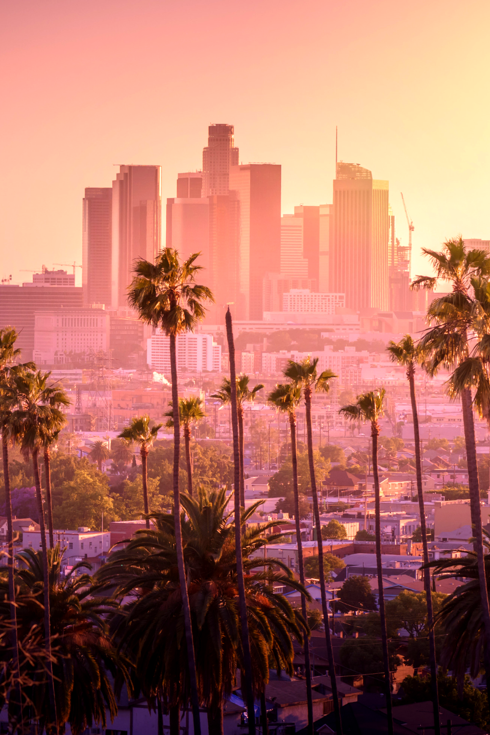 Here is an awesome list of the 15 hottest things you have to do when you're in Los Angeles! #LA #losangeles #california #visit #travel #vacation #best #guide #advice #trip #tip #tricks