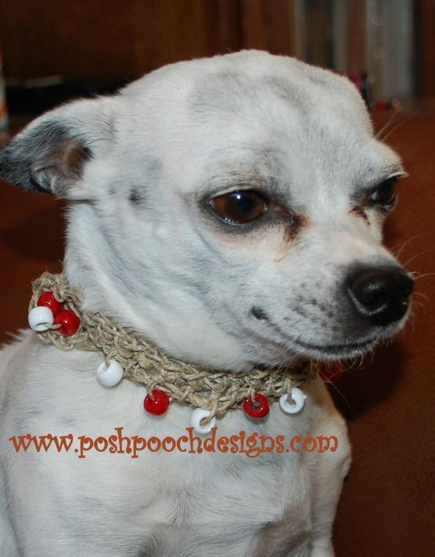Hemp Beaded Dog Collar Free Crochet Pattern From The Yarn Box Pet