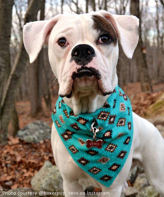 Teal Tribal Dog Bandana With Space For Tags Handmade Dog Scarf W