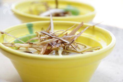Crema de maíz con queso manchego y crujiente de puerro - https://www.thermorecetas.com/crema-de-maiz-con-queso-manchego-y-crujiente-de-puerro/