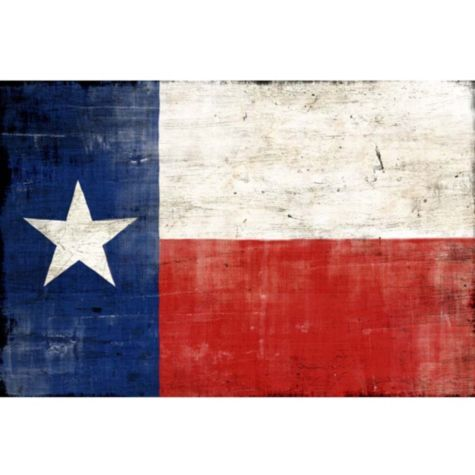 Texas Flag From Z Gallerie Texas Wall Art Art Texas Flags
