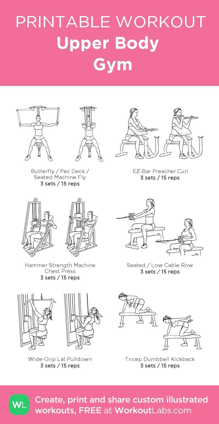 Upper Body | Gym · Free workout by WorkoutLabs Fit