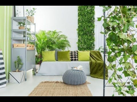 50 + inspirasi taman dalam rumah ukuran kecil | tanaman