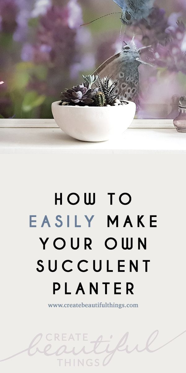 How to Easily Make a Succulent Planter #projekteimfreien