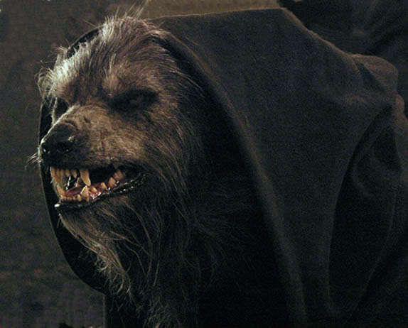 werewolves werewolves photo lycan pinterest loup. Black Bedroom Furniture Sets. Home Design Ideas