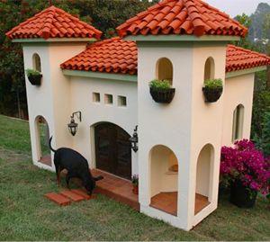 Superb Unique Dog House Designs | Cesar Millan Gallery