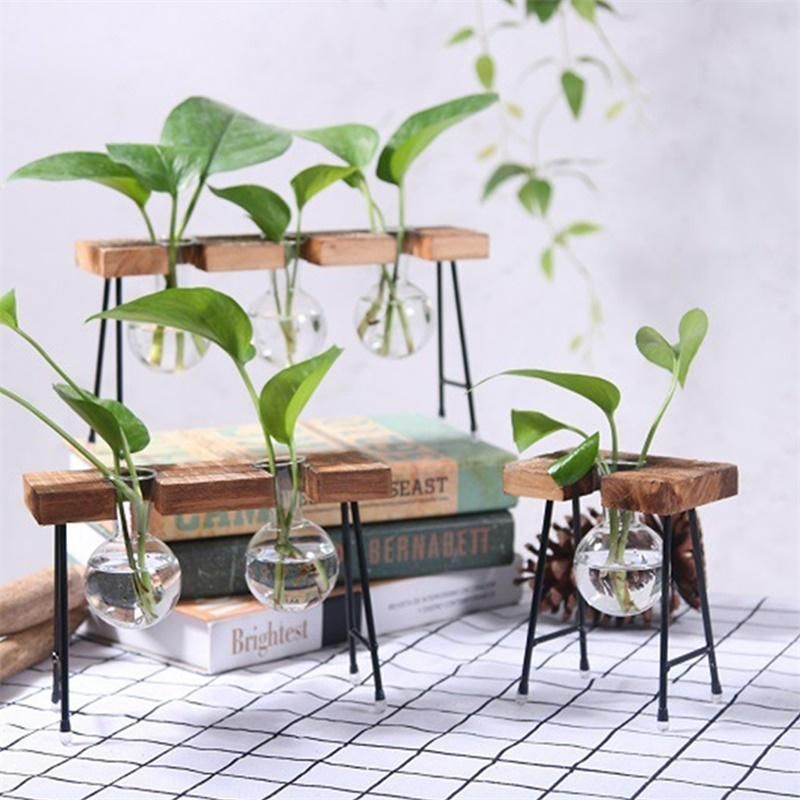 Clear Glass Bulb Planter With Rustic Wood Stand Metal Swivel Holder 12 Styles B