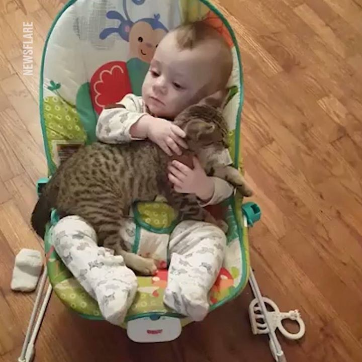Just a baby cuddling his kitten ️