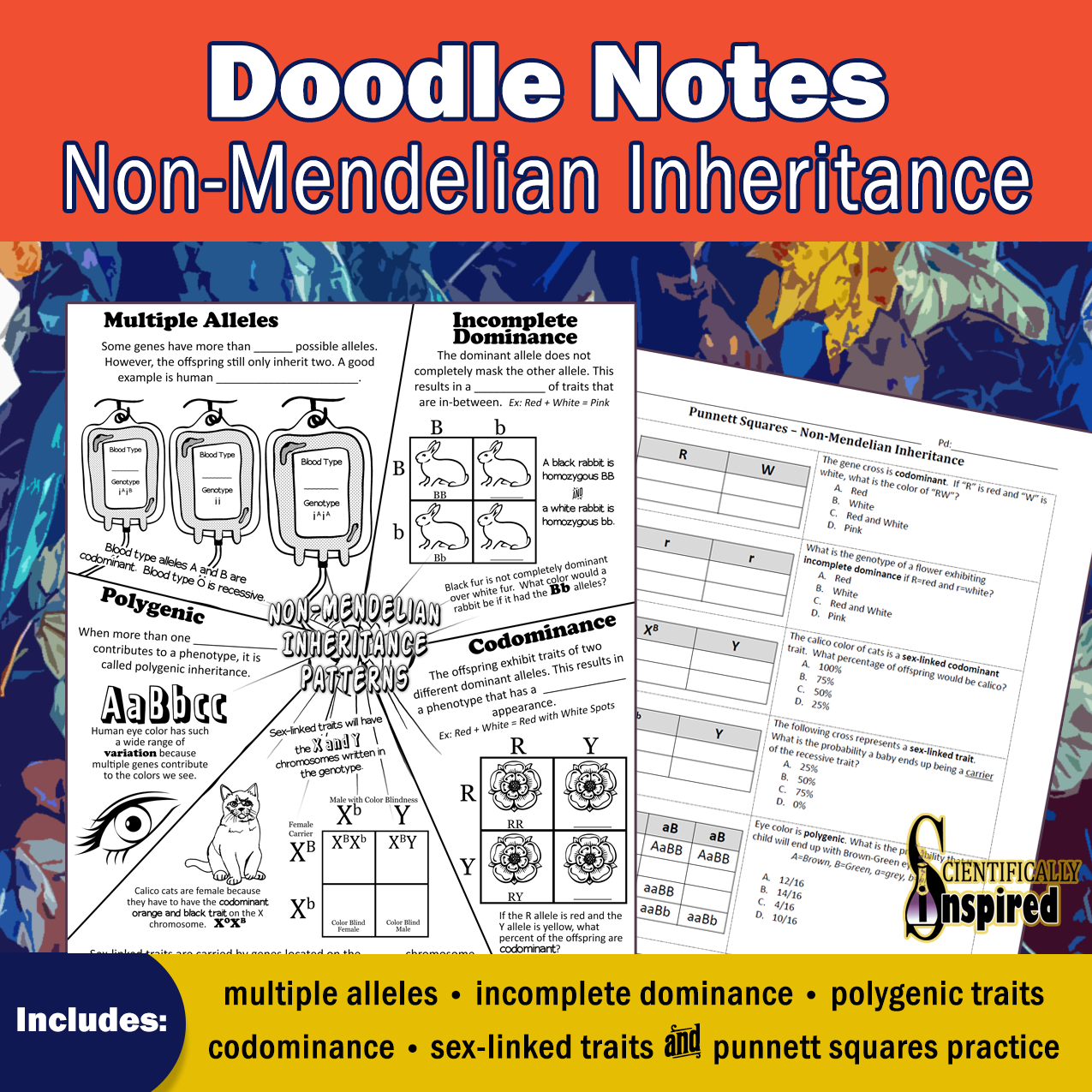 Non Mendelian Doodle Notes In