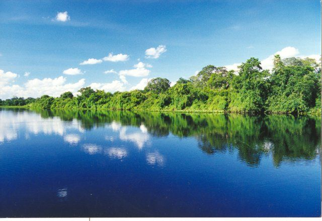 Pantanal Instituto Sos Pantanal Apresenta Resultados De