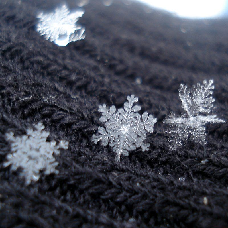 Snowflake Desktop Background (68+ images) |Real Snowflakes Background