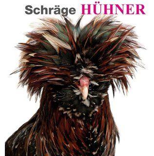 Schräge Hühner: Ein unterhaltsamer Bildband mit den schönsten und lustigsten Bildern der gefiederten Tiere, mit süßen Küken und eindrucksvollen Hähnen