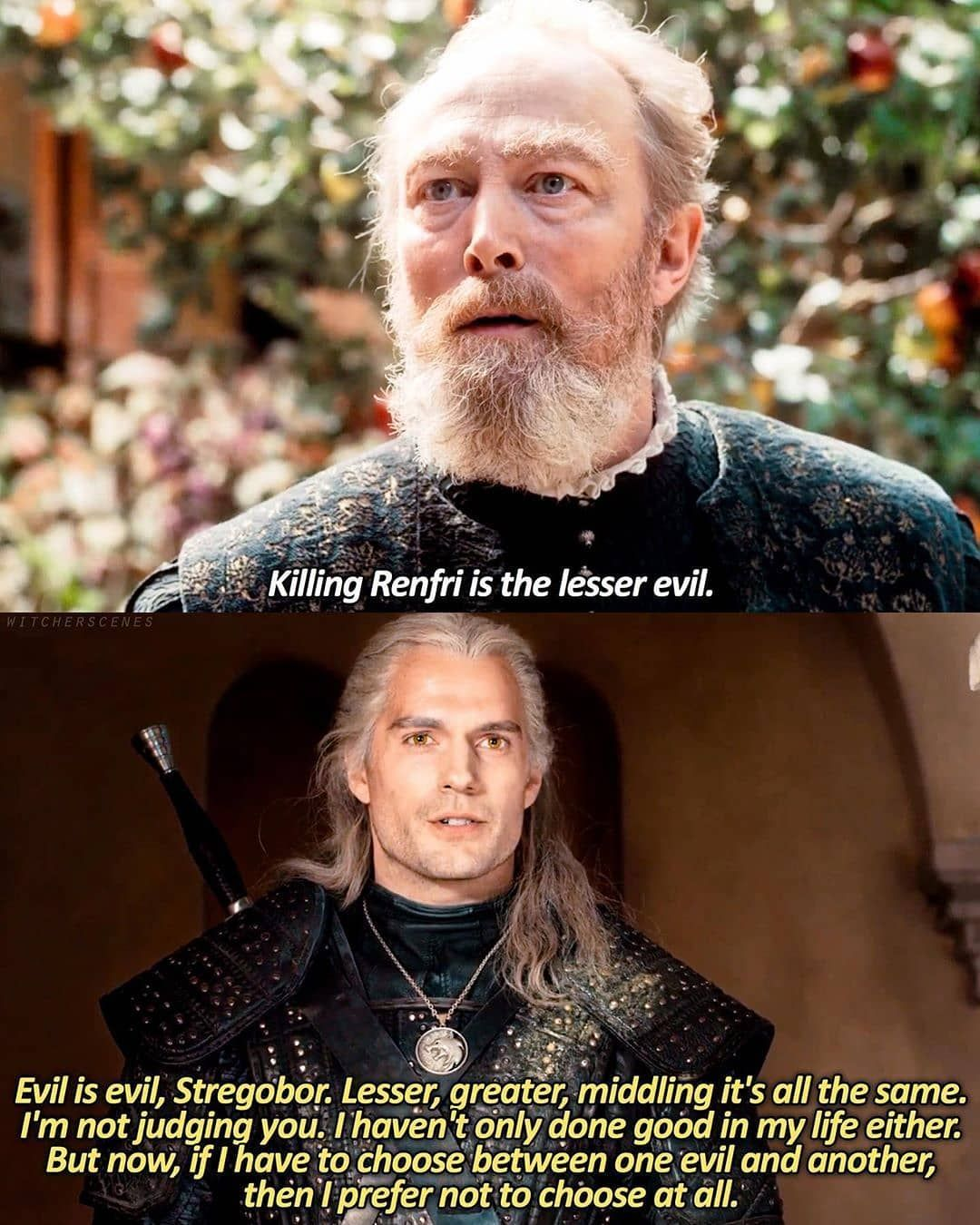 Pin By Victoria Hernandez On Witcher The Witcher Books The Witcher Funny Memes