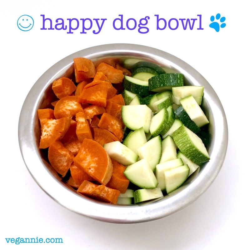 Happy dog bowl sweet potato zucchini vegannie vegan healthy vegan gluten free homemade dog food recipes that are simple and easy to make sciox Gallery