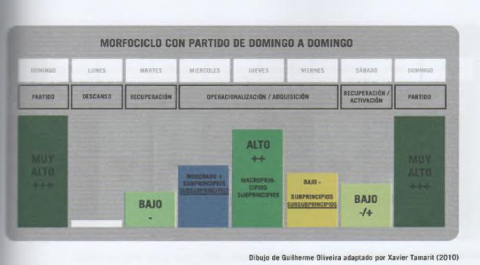 Periodización Táctica Qué Es Modelo De Juego Principios E Información Periodizacion El Principito Juegos