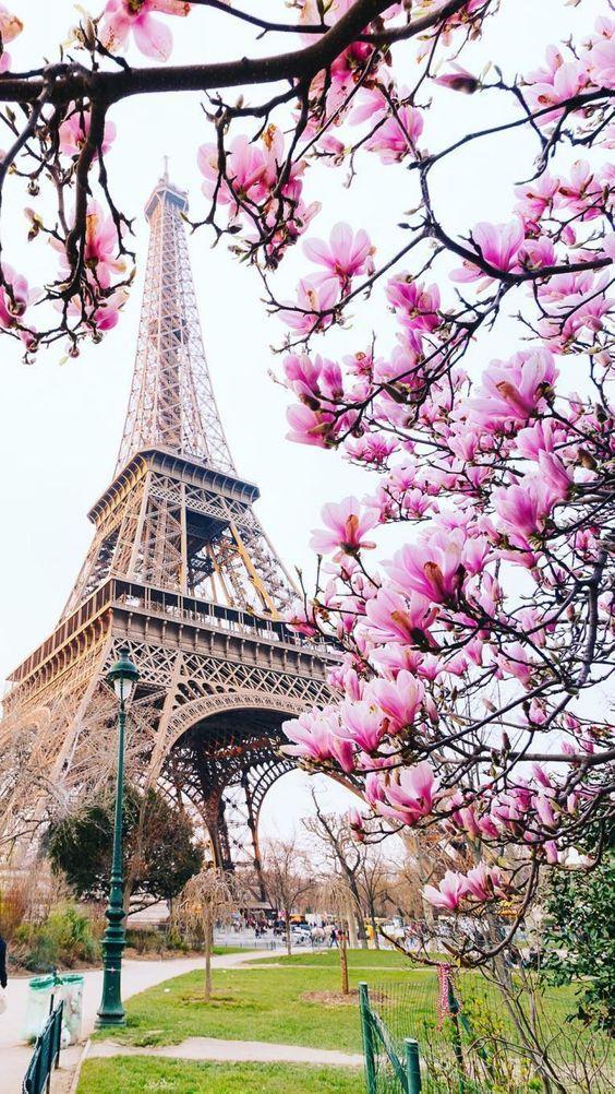 Wallpaper Torre Eiffel
