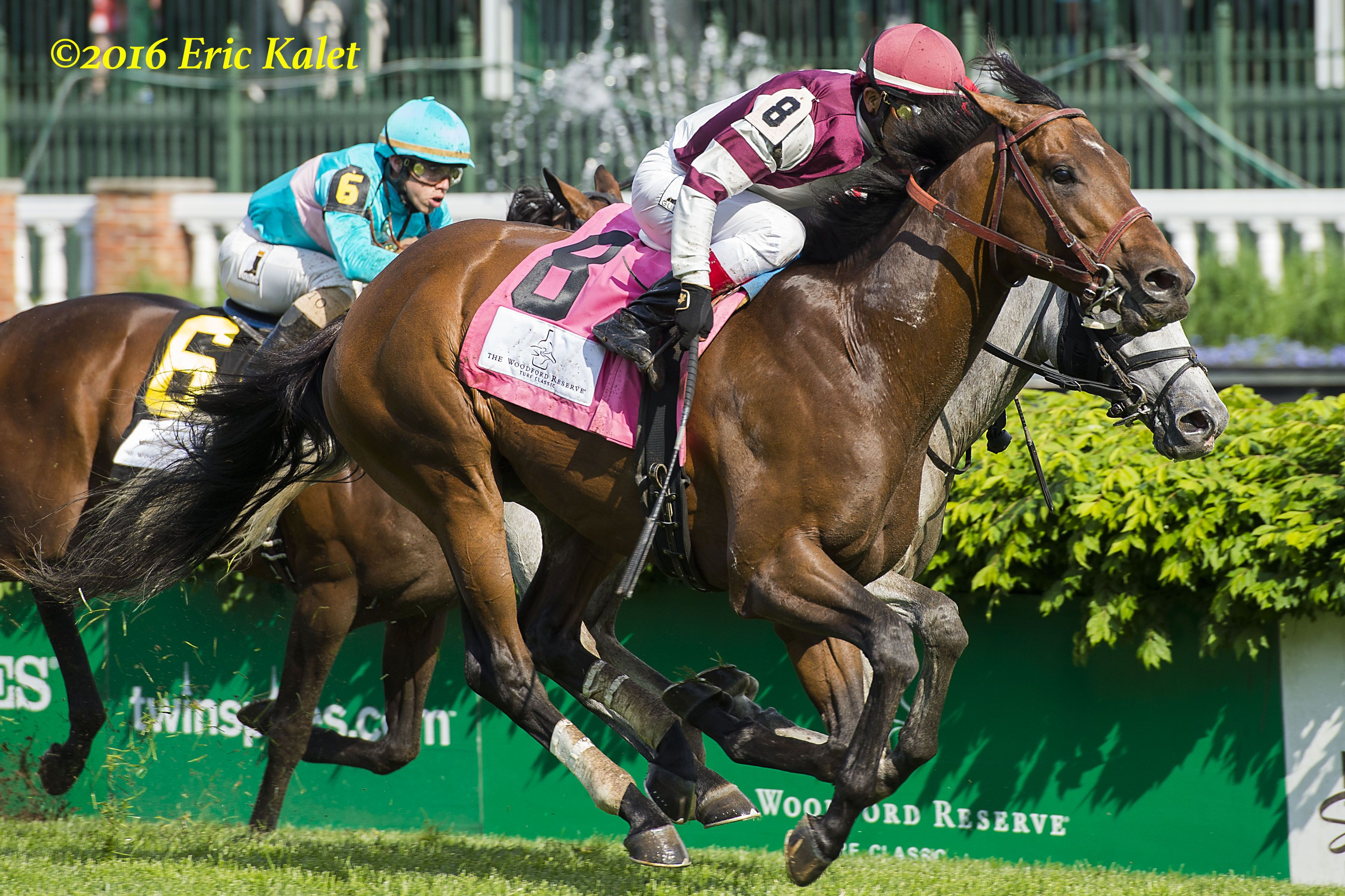 Divisidero Gets His First Gr1 Win In The Woodford Reserve Turf Classic Photo Courtesy Of Eric Kalet And The Paulick Report Www Paulickreport Com