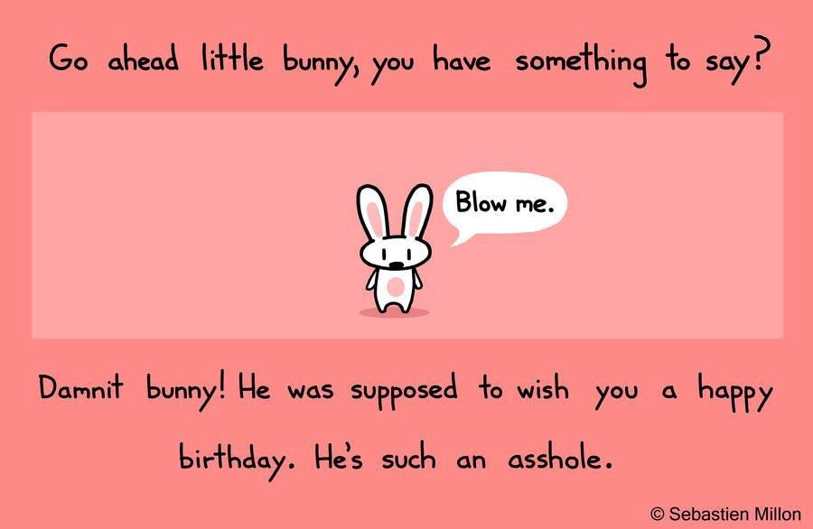 36bb01fb0fd1f231b5a90e5f4a550ef9 silly rabbit! funny! pinterest silly rabbit
