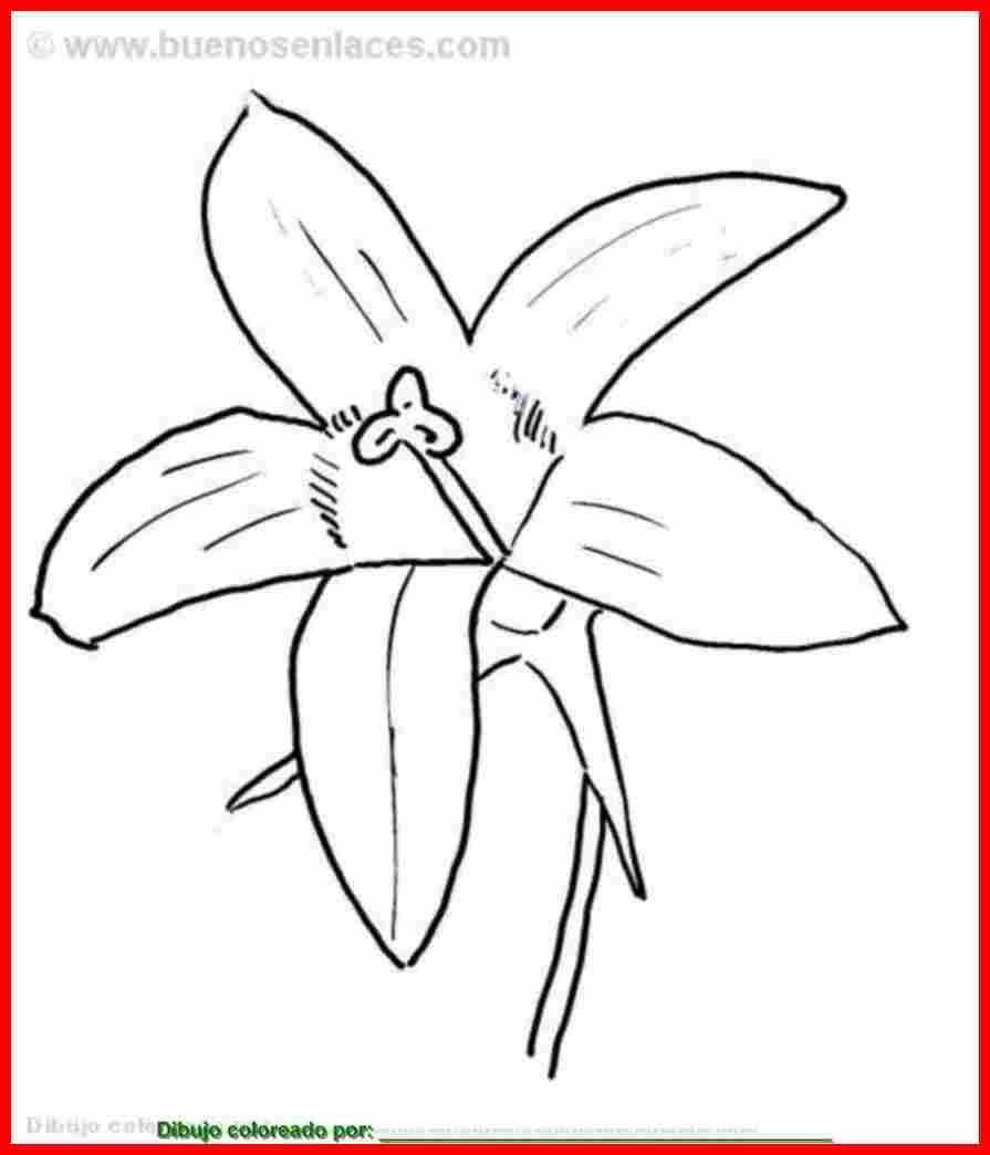 dibujos de flores japonesas para colorear   Buscar con Google