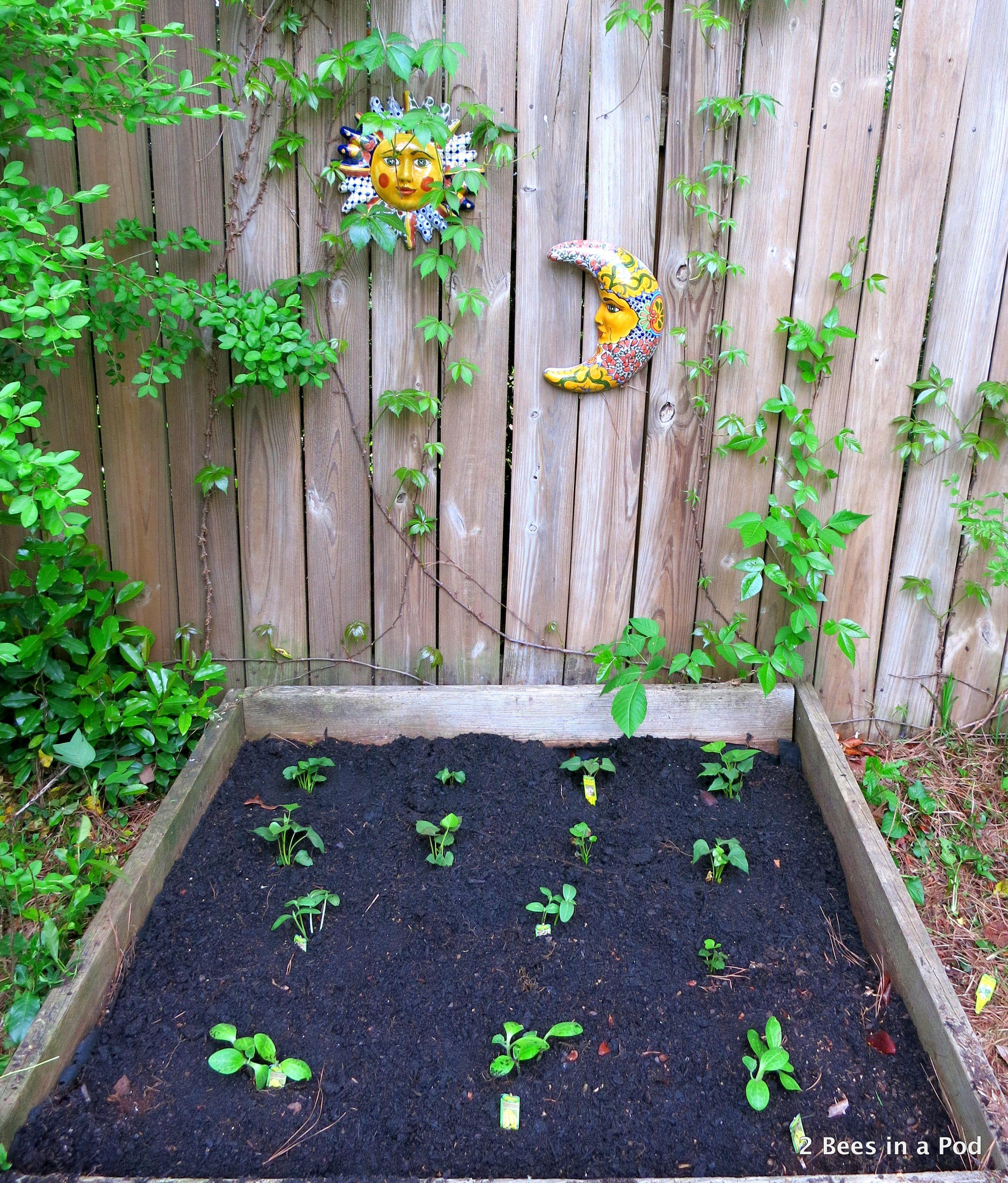 20 Raised Bed Garden Designs And Beautiful Backyard: Spring Vegetable Garden